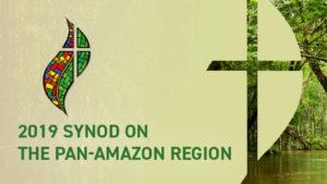 Pope Francis: Amazon Synod involves everyone