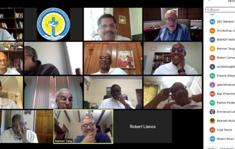 Annual Plenary Meeting 2020 - Zoom Online Conferencing